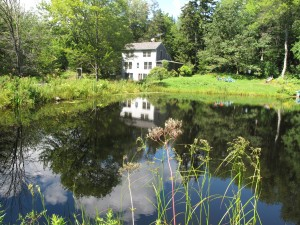 Pond and house from far shore